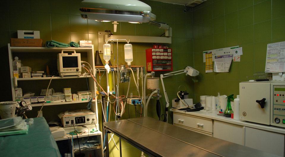 Quirofano de la Clinica Veterinaria San Miguel